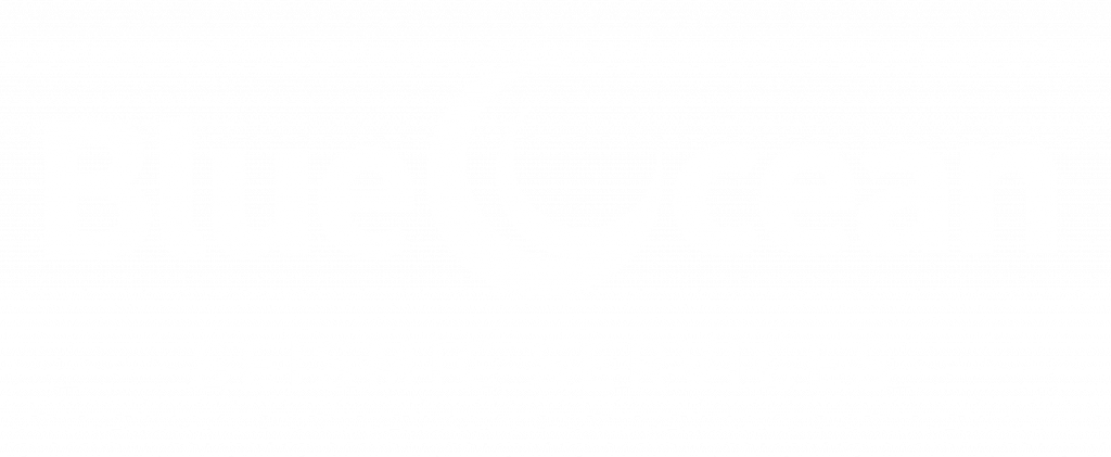 Blue Ocean leismic Services